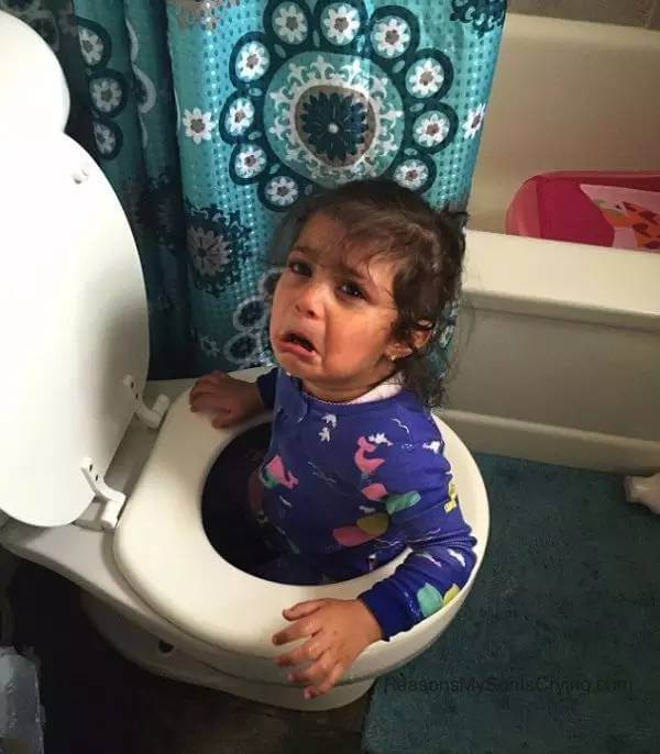 Doesn't Want To Get Out Of The Toilet.jpg