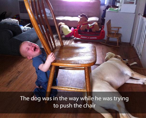 Move It Doggo.jpg