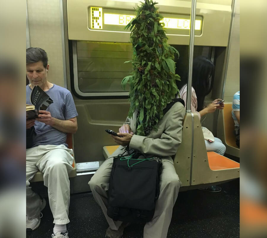 bush head.jpg