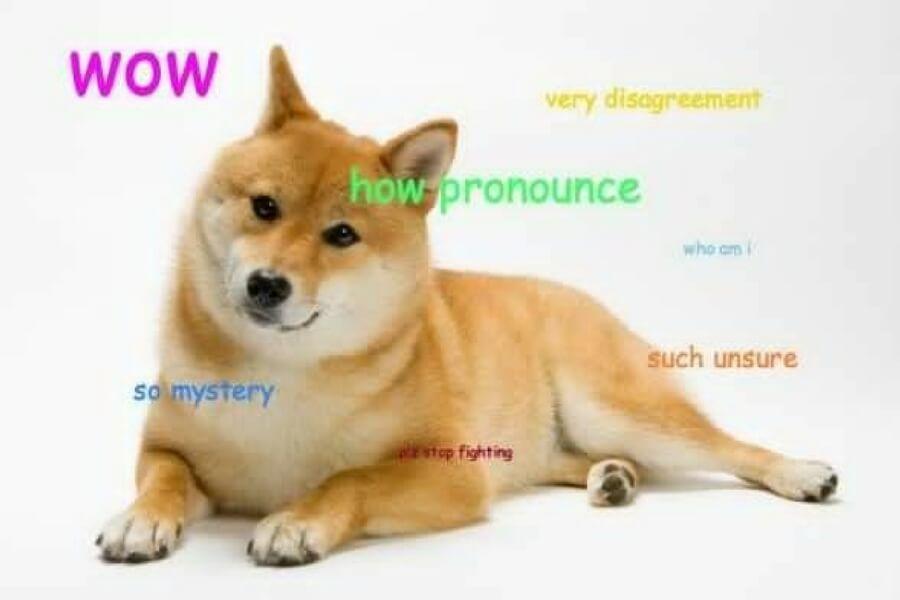doge pronouncing meme.jpg