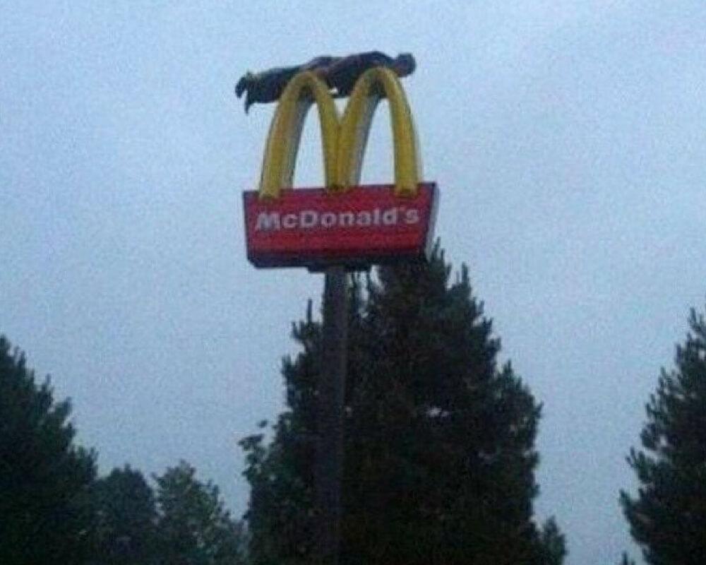 mcdonalds3 plank.jpg
